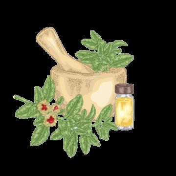 Praxom Aloe pure 1 LTR